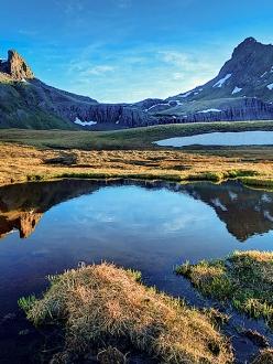 Tundra Reflection