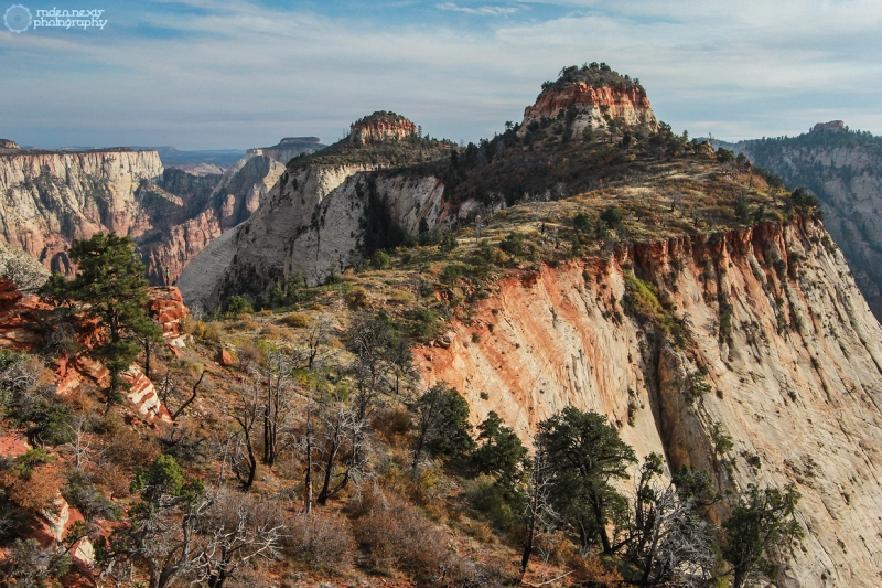 Alternate view toward Castle Dome from our bushwhack off the West Rim Trail.